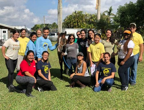 FIU Pre-Vet Society visits SFSPCA for off-campus learning & work experience