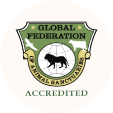 globalFederationAccredited_footerSeal