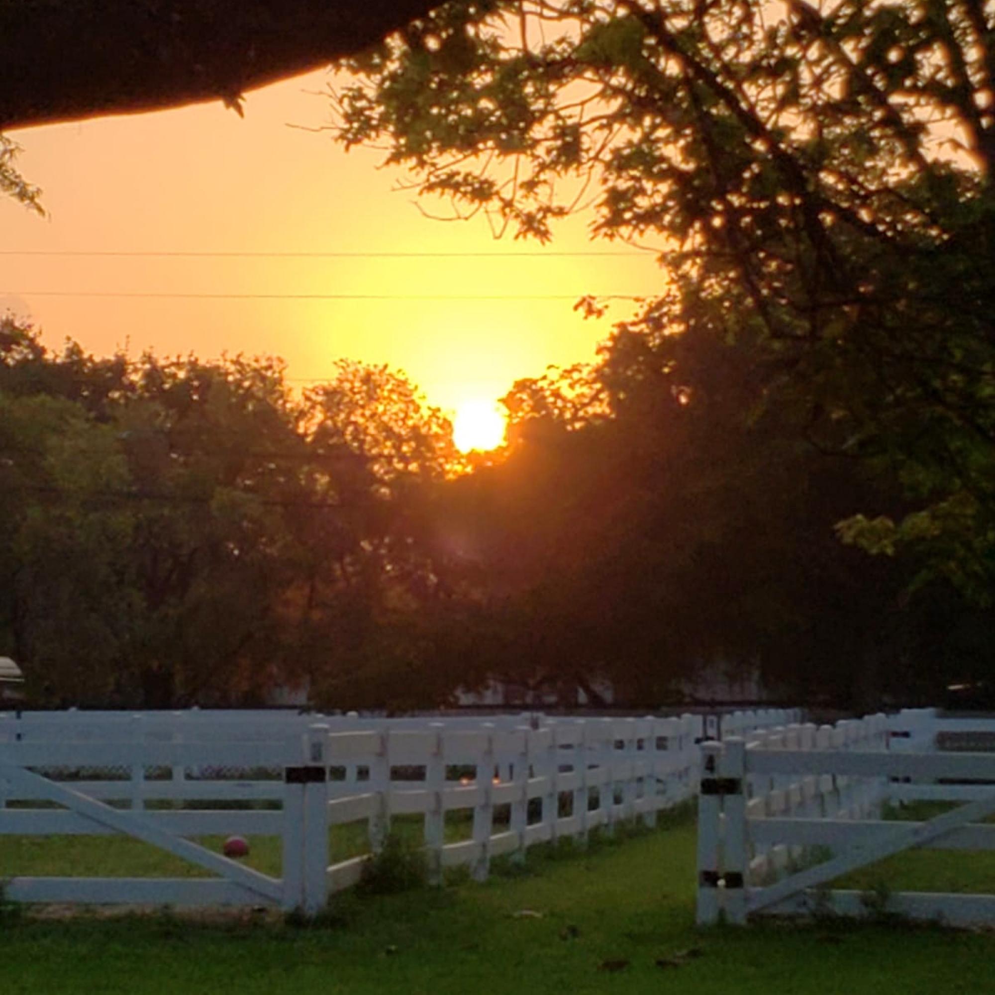 SFSPCA Ranch at sunset
